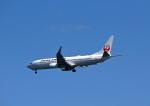 tkosadaさんが、羽田空港で撮影した日本航空 737-846の航空フォト(写真)