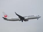 えぬえむさんが、羽田空港で撮影した日本航空 737-846の航空フォト(写真)
