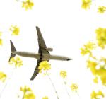 TopGunさんが、福岡空港で撮影した日本航空 737-846の航空フォト(写真)