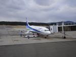 pringlesさんが、庄内空港で撮影した全日空 737-881の航空フォト(写真)