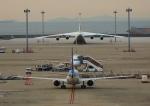 タミーさんが、中部国際空港で撮影したアントノフ・エアラインズ An-124 Ruslanの航空フォト(写真)