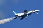 MrMoricyanさんが、松島基地で撮影した航空自衛隊 T-4の航空フォト(写真)