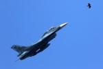 MrMoricyanさんが、松島基地で撮影した航空自衛隊 F-2Bの航空フォト(写真)