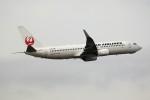 もぐ3さんが、羽田空港で撮影した日本航空 737-846の航空フォト(写真)