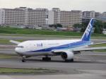 flyflygoさんが、伊丹空港で撮影した全日空 777-281の航空フォト(写真)
