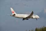 熊五郎~さんが、成田国際空港で撮影した日本航空 787-846の航空フォト(写真)
