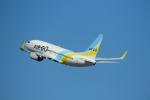 timeさんが、羽田空港で撮影したAIR DO 737-781の航空フォト(写真)