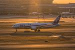 Simeonさんが、羽田空港で撮影した全日空 787-881の航空フォト(写真)