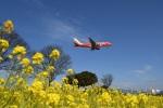 ワーゲンバスさんが、福岡空港で撮影したフジドリームエアラインズ ERJ-170-100 (ERJ-170STD)の航空フォト(写真)