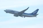 水月さんが、関西国際空港で撮影した全日空 737-781の航空フォト(写真)