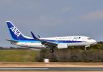 雲霧さんが、成田国際空港で撮影した全日空 737-781の航空フォト(写真)