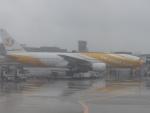 Snow manさんが、成田国際空港で撮影したノックスクート 777-212/ERの航空フォト(写真)