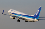 X8618さんが、伊丹空港で撮影した全日空 737-881の航空フォト(写真)