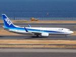 51ANさんが、羽田空港で撮影した全日空 737-881の航空フォト(写真)