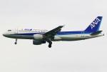 あしゅーさんが、羽田空港で撮影した全日空 A320-211の航空フォト(写真)