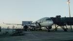 仙山貨物さんが、ドーハ・ハマド国際空港で撮影したカタール航空 A350-941XWBの航空フォト(写真)