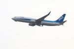 ガス屋のヨッシーさんが、関西国際空港で撮影した全日空 737-881の航空フォト(写真)