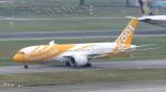 誘喜さんが、シンガポール・チャンギ国際空港で撮影したスクート 787-8 Dreamlinerの航空フォト(写真)