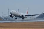 qooさんが、高松空港で撮影した日本航空 737-846の航空フォト(写真)