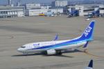 ja0hleさんが、中部国際空港で撮影した全日空 737-781の航空フォト(写真)