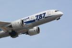 sukiさんが、成田国際空港で撮影した全日空 787-881の航空フォト(写真)