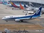 51ANさんが、関西国際空港で撮影した全日空 737-781の航空フォト(写真)