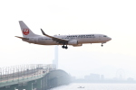 ガス屋のヨッシーさんが、関西国際空港で撮影した日本航空 737-846の航空フォト(写真)