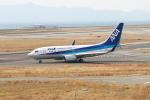 ガス屋のヨッシーさんが、関西国際空港で撮影した全日空 737-781の航空フォト(写真)