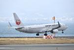 kix-boobyさんが、関西国際空港で撮影した日本航空 737-846の航空フォト(写真)