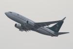 ファインディングさんが、羽田空港で撮影したサウジアラビア財務省 737-7FGの航空フォト(写真)