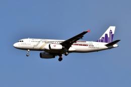 sonnyさんが、成田国際空港で撮影した香港エクスプレス A320-232の航空フォト(写真)