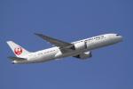 とらとらさんが、羽田空港で撮影した日本航空 787-846の航空フォト(写真)
