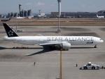 51ANさんが、羽田空港で撮影した全日空 777-381/ERの航空フォト(写真)