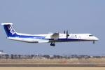 ドリさんが、仙台空港で撮影したANAウイングス DHC-8-402Q Dash 8の航空フォト(写真)