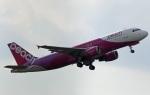 Wasawasa-isaoさんが、成田国際空港で撮影したピーチ A320-214の航空フォト(写真)