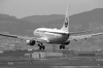 khideさんが、伊丹空港で撮影した日本航空 737-846の航空フォト(写真)