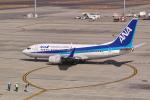 delawakaさんが、中部国際空港で撮影した全日空 737-781の航空フォト(写真)