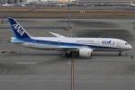 たみぃさんが、羽田空港で撮影した全日空 787-881の航空フォト(写真)