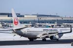 noriphotoさんが、新千歳空港で撮影した日本航空 737-846の航空フォト(写真)