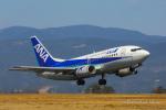 strikeさんが、高知空港で撮影したANAウイングス 737-54Kの航空フォト(写真)