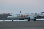 sakanayahiroさんが、釧路空港で撮影した全日空 737-881の航空フォト(写真)