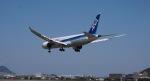 ゆうパックさんが、松山空港で撮影した全日空 787-881の航空フォト(写真)