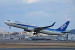 空が大好き!さんが、伊丹空港で撮影した全日空 737-881の航空フォト(写真)
