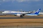 空が大好き!さんが、伊丹空港で撮影した全日空 787-9の航空フォト(写真)