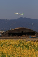 Ken-Tさんが、高知空港で撮影したANAウイングス DHC-8-402Q Dash 8の航空フォト(写真)