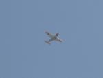 sanadaさんが、小月航空基地で撮影した海上自衛隊 T-5の航空フォト(写真)