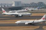 maverickさんが、羽田空港で撮影した日本航空 737-846の航空フォト(写真)