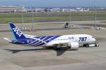 せぷてんばーさんが、羽田空港で撮影した全日空 787-8 Dreamlinerの航空フォト(写真)