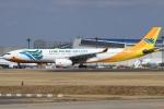 Wings Flapさんが、成田国際空港で撮影したセブパシフィック航空 A330-343Eの航空フォト(写真)