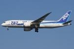 Wings Flapさんが、羽田空港で撮影した全日空 787-8 Dreamlinerの航空フォト(写真)
